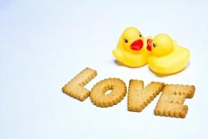 ahiru_love
