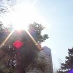 【三文日記】2009年3月