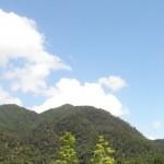 【三文日記】2008年8月