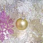 【三文日記】2001年12月