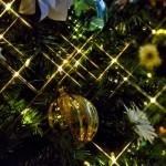 クリスマスの頃には〜奄美 ゼローム神父の思い出