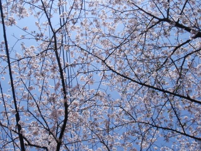 【三文日記】2002年4月