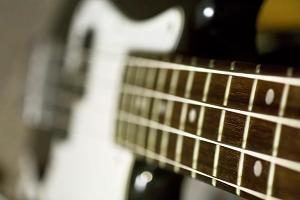 bass_neck