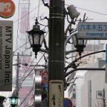 雨の日の東京タワーと六本木の電信柱