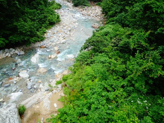 蛇行する川のほとり/恩田陸