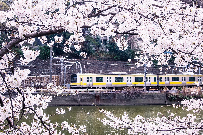 【三文日記】2007年4月