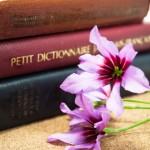 辞書に夢中です。~コピーライターになりたい!