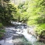 鳩ノ巣渓谷 ハイキングコース