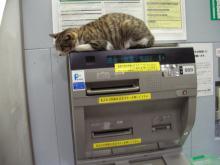 ATM_cat3