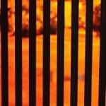 Impulse! ~オレンジと黒の革命【1】
