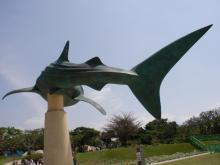 美ら海水族館へ行き、石投げ、水切り