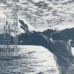割れた鏡 または化石の鳥/吉沢元治