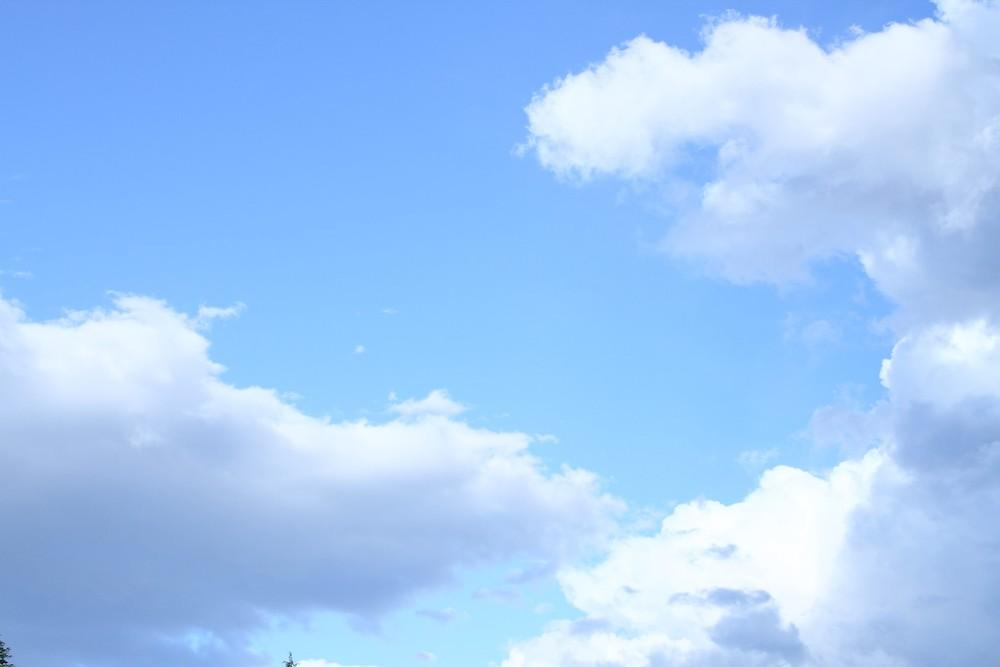 月9の『恋仲』は、青が美しいドラマ。葵や蒼井に引っ掛けてる?