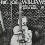 9弦ギター・ブルース/ビッグ・ジョー・ウィリアムス