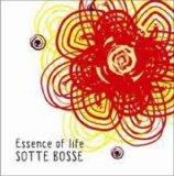 Sotte Bosse これは、なかなか気持ちいい