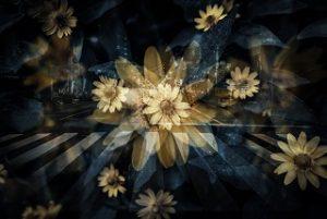 crossroad_flower