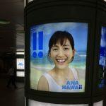 綾瀬はるかのANA広告ハワイ in 新宿中央広場のグラフィック