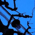 六本木と乃木坂の中間地点・強風で揺れる電燈