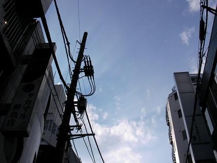 夏はこれから電信柱